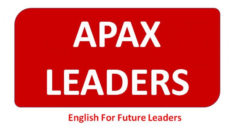 apax_leader_sukienquynhon